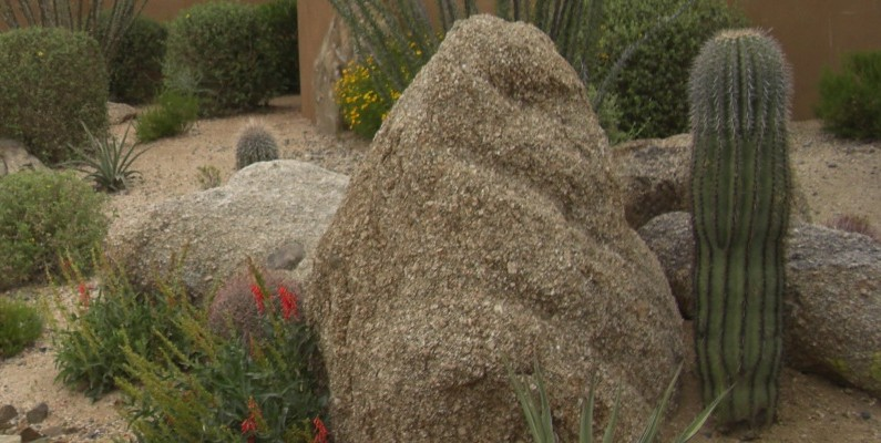 Paradise Valley Landscaping