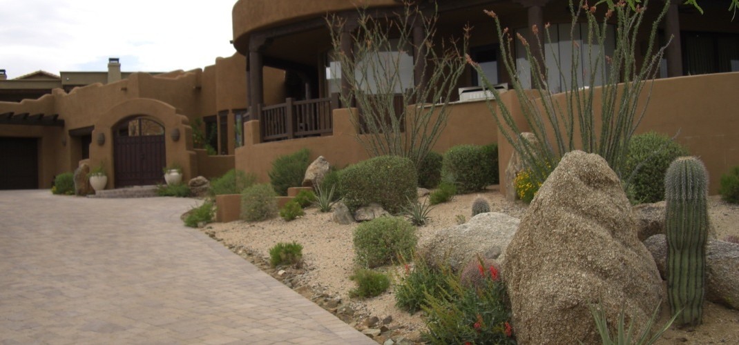 Xeriscaping Landscape Design For Phoenix Amp Scottsdale