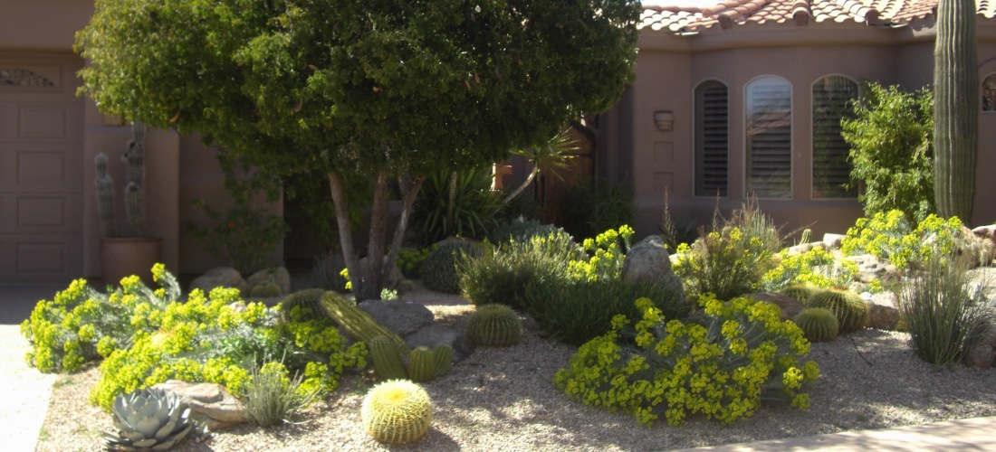 Decrease Landscape Maintenance Costs