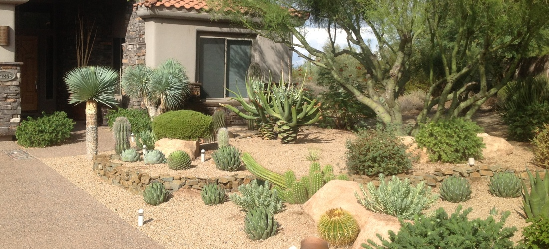 Landscaping in phoenix scottsdale portfolio desert for Landscape design phoenix